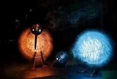 Kiwi Żywy Sydney Zdjęcia Stock