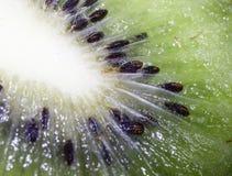 Kiwi, ziarno, projekt, owoc, smugi, połysk, tekstura, świecenie, ciało Zdjęcie Stock