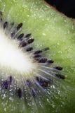 Kiwi, ziarno, projekt, owoc, smugi, połysk, tekstura, świecenie, ciało Zdjęcia Royalty Free