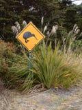 Kiwier som korsar tecknet Fotografering för Bildbyråer