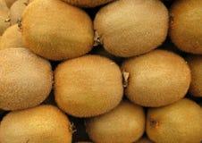 kiwifruit Στοκ Εικόνες