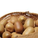 kiwifruit Isolato immagine stock