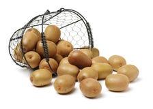 kiwifruit Isolato fotografia stock