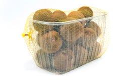 Kiwifruit in plastic kom Stock Afbeelding
