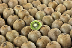 Kiwifruits Fotografie Stock