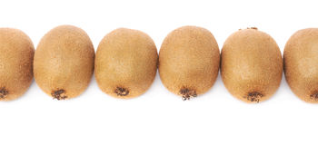 Kiwifruits arranged in a line, isolated Stock Image
