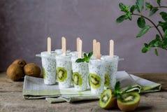 Kiwijoghurt-Eiscremeeis am stiel Gesunder Nachtisch Selbst gemachtes Produkt Blaues Meer, Himmel u lizenzfreies stockbild