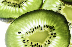 Kiwis stockfotos