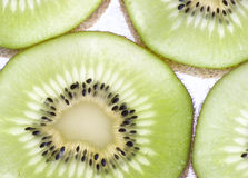 Kiwis Cross Section. Sliced kiwis in cross section back lit and slightly translucent stock images