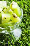 Kiwis dans le vase Photo libre de droits