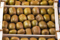 Kiwis on Display at a Local Market. In Italy stock photo