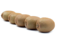 Kiwis lined up stock images