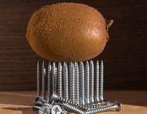 Kiwis on universal silver-colored screws with a triangle pointed upwards.  Stock Photos