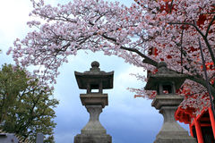 Kiyomizu寺庙,日本 免版税图库摄影