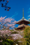 kiyomizu świątynia Zdjęcie Stock