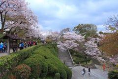 Kiyomizu świątynia, Japonia Obrazy Royalty Free