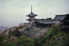Kiyomizu-Dera, Κιότο Στοκ Εικόνα