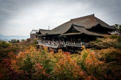 KIYOMIZU DERA: Όμορφο τοπίο του φθινοπώρου με το ζωηρόχρωμο σφένδαμνο Στοκ Εικόνα