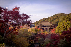 Kiyomizu-dera Immagine Stock