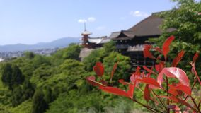 Kiyomizu Dera 免版税库存图片