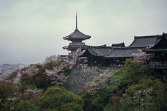 Kiyomizu-dera,Kyoto Stock Image