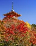Kiyomizu-dera relikskrin i Kyoto Royaltyfri Fotografi