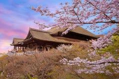 Kiyomizu-dera stage with cherry blossom Stock Photos
