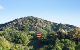 Kiyomizu-dera tempel i sommar i Kyoto, Japan fotografering för bildbyråer