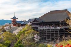 Kiyomizu-dera Tempel und Kirschblüte würzen Kirschblüte auf sprin Lizenzfreie Stockfotografie