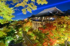 Kiyomizu-dera Temple. Kyoto, Japan - November 19, 2012: Tourists atop the famed stage at Kiyomizu Dera during the annual fall light show. The temple is one of Royalty Free Stock Image