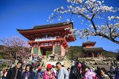 Kiyomizu-dera in Temple Kyoto Stock Photography