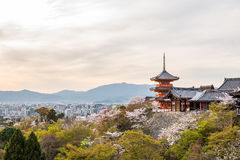 Kiyomizu dera temple in spring Royalty Free Stock Photography