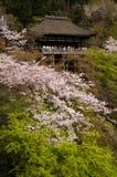 Kiyomizu relikskrin i Kyoto, Japan arkivfoton
