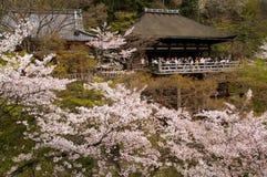 Kiyomizu relikskrin i Kyoto, Japan arkivbild