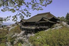 Kiyomizu tempel och körsbärsröd blomning i Kyoto Arkivfoto