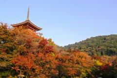 Kiyomizu - templo del dera ocultado detrás del follaje de árboles imagen de archivo libre de regalías