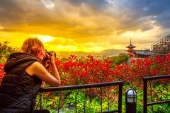 Kiyomizudera旅行摄影师 库存图片