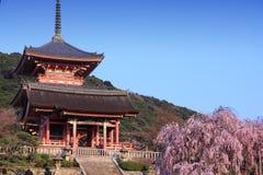 Kiyomizudera temple, Kyoto Royalty Free Stock Images