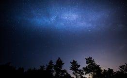 Kiyv Overzeese ster Stock Afbeeldingen