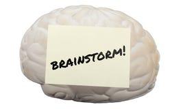 Kläckning av ideer! skriftligt på en modellhjärna som frambringar idéer Arkivbilder