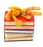 Klädd med filt mjuk leksakkanin ligger på bunt av böcker Arkivbild