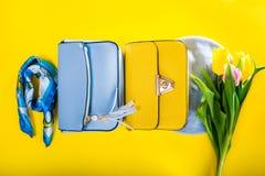 Kläder och tillbehör för vår kvinnlig med tulpan Stilfulla handväskor med basker, halsduken och blommor Mode arkivfoto