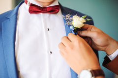 klämma fast för boutonniere Royaltyfri Foto