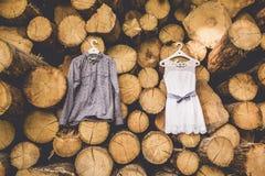 Klänningen för brud` s hänger på träd royaltyfria bilder