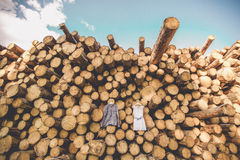 Klänningen för brud` s hänger på träd arkivfoto