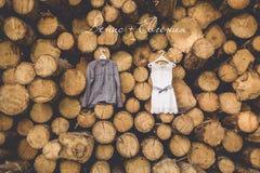 Klänningen för brud` s hänger på träd royaltyfri fotografi