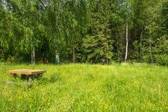 Klärung in den Wald, vor dem Abstieg zum heiligen Pokrovsky Stockfotos