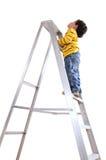 klättra över white Royaltyfria Foton
