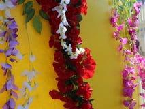 Klättra blommor arkivfilmer
