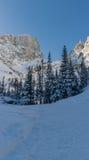 Klättra en snödriva i Colorado berg Fotografering för Bildbyråer